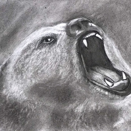 51A_Grizzly_Charcoal_13x20