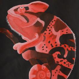 21A_Monochrome Chameleon_acrylic_14.3x20.14