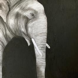 2B_elephant_charcoal_14x14