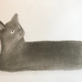 46B_Cinder_Charcoal_20x13in