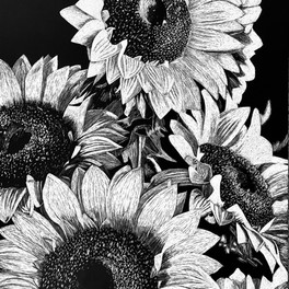 1C_Looking for the Sun_scratchboard_11x14