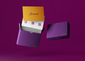 Разработка гайдлайна для бренда сумок «Bernard» в г. Киев.