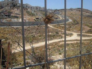 Separation Barrier or Security Fence?: The Wall Divides Israelis Too