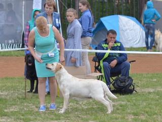Наши успехи на Чемпионате РКФ г.Заречный 12.06.2016