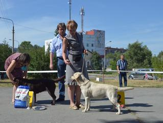 Уральское БАЛИ - выставка в Кыштыме
