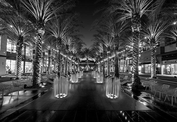 Scottsdale_Immersion_Photo_2_2000x_edited.jpg