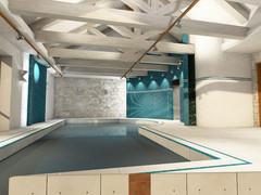 Общий вид помещения бассейна.Вариант с белыми фермами