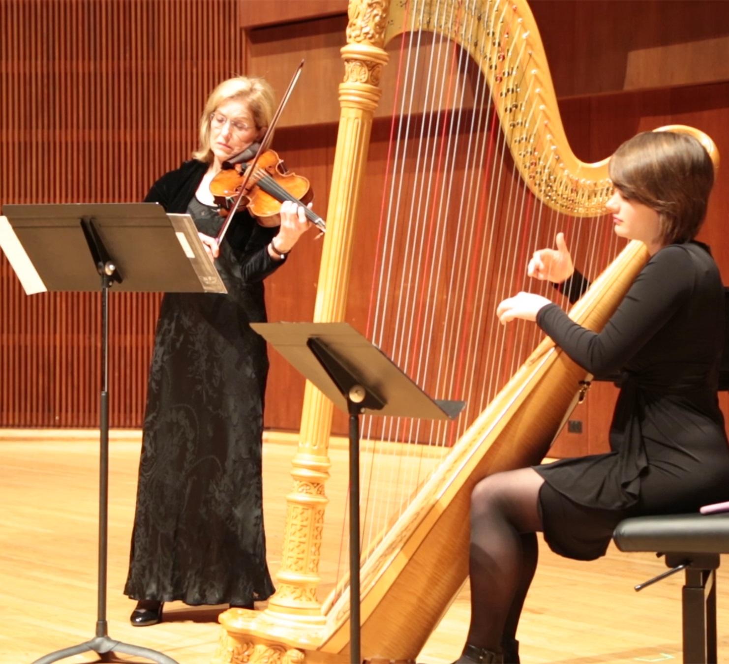 pigovat harp viola 2