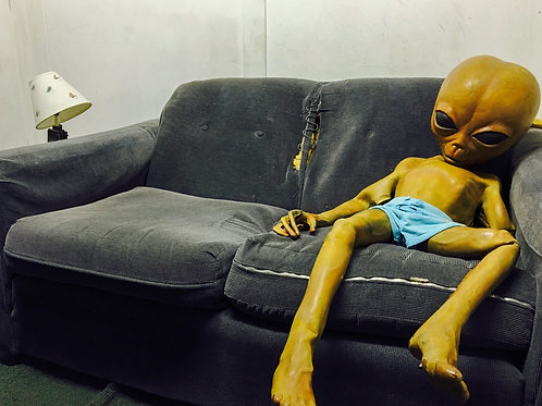 Roswell (7)