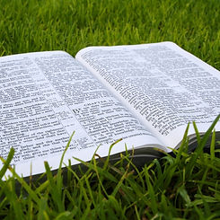 Open_Bible_on_Grass.jpg