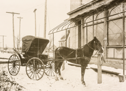 4 - Horse and Buggy