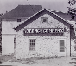 5 - The Branch Company