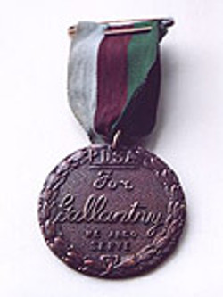 The PDSA Dickin Medal