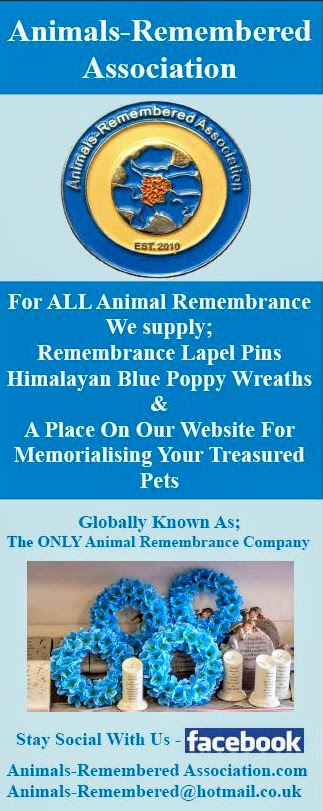 Animals-Remembered Association Banner
