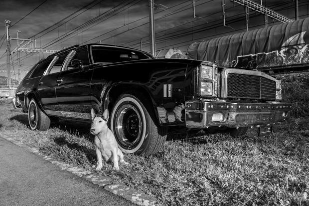 Chevy Malibu 1976