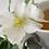 Thumbnail: White Tea 100% Pure Soy Candle