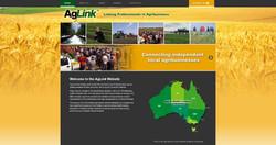 WEBPAGE AGLINK.jpg