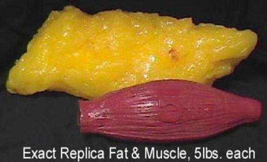 Weight Loss or Fat Loss?
