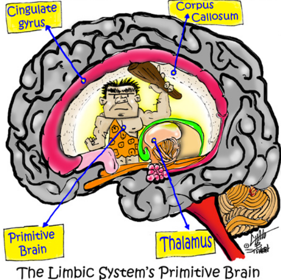 Overcoming the primitive brain in dieting