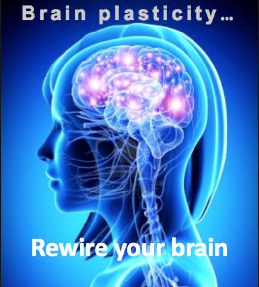 Reprogram your brain for diet success