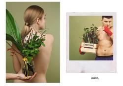 Квітни
