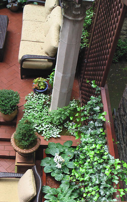 NYC Courtyard Details & Planting