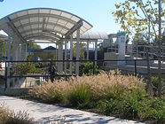 MNR Beacon Canopy Landscape