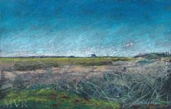 Cape Tidal Dune_Ptown ConTEMPOrary Art Impressionist Landscape NYMA