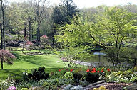 Landscape Tree Garden Hudson ValleyNY