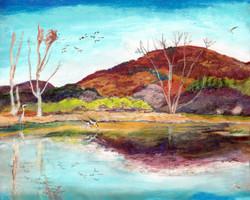 Berkshires Autumn Wetland 12 x 9  Apri