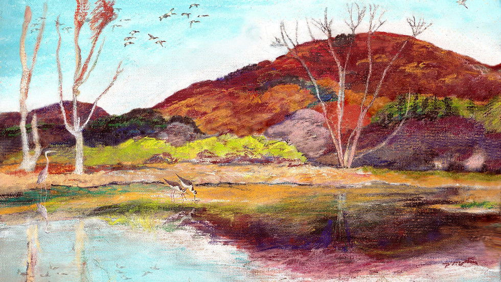 Autumn Wetland ALIVE in Peak Wild Color