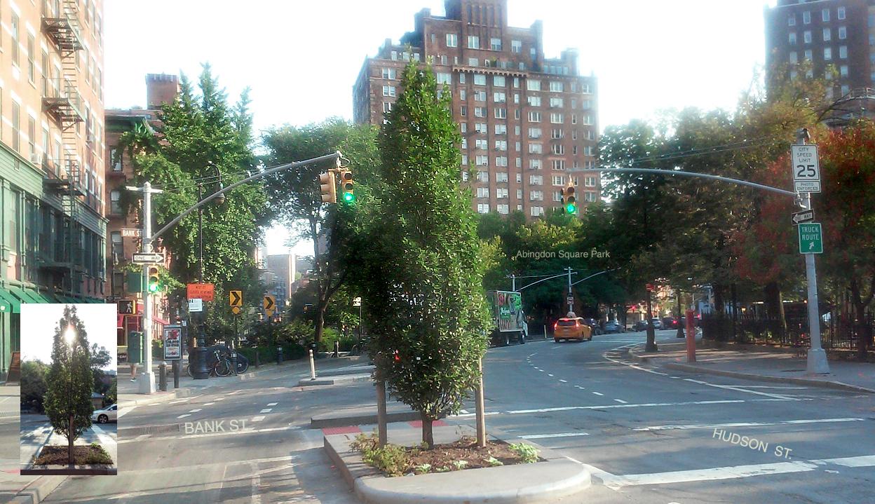 David Rice 9/11 Memorial Tree