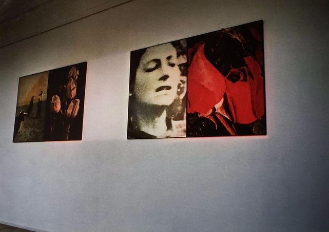 LANDSKAB MED RØDE BLOMSTER  Charlottenborg, Copenhagen, 1990  Fotografi med indfarvet, afmasket lys. Landscape with Red Flowers. Photography and Light lnstallation. 