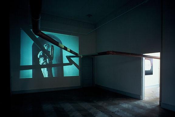 audio installation, Hortus Digitalis, Solo udstillng  Museet for Samtidskunst, Roskilde 2002, Ane Mette Ruge