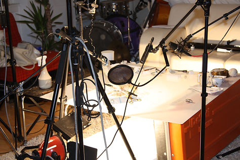 'PLAeTnEr'.The recordings. With Emil Alenius Boserup.