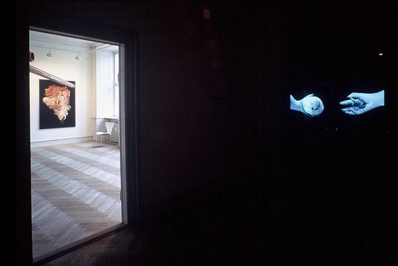 Video art, morph, photography, art installation, audio installation, Hortus Digitalis, Solo udstillng  Museet for Samtidskunst, Roskilde 2002, Ane Mette Ruge