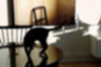 Ane Mette Ruge, 'Den med Stolen. 'Chair'. Lambda Print.
