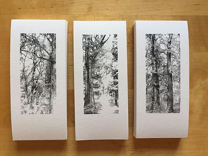 mini prints_edited.jpg