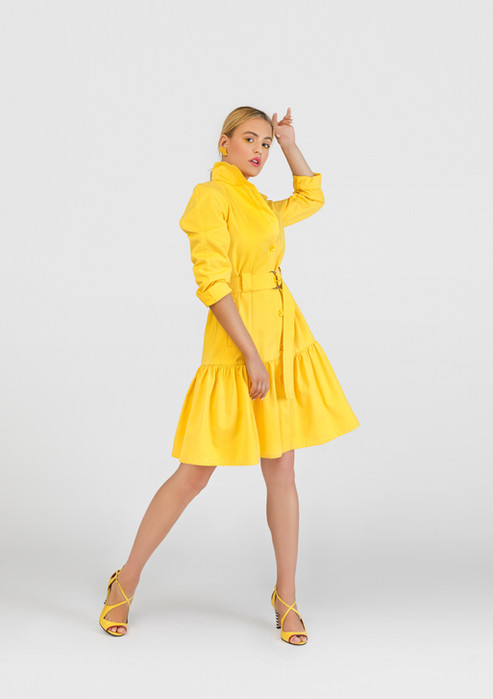 French Trench Yellow
