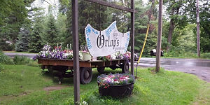 Orlop Farm and Greenhouse
