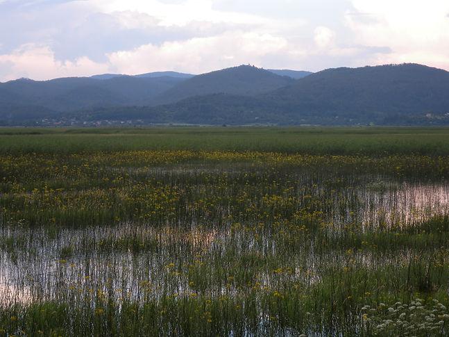 cerkniško jezero slovenia