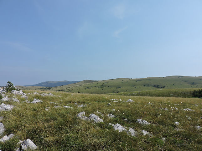 karst grassland slovenia