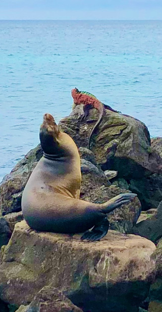 San Cristobal Island, Galápagos