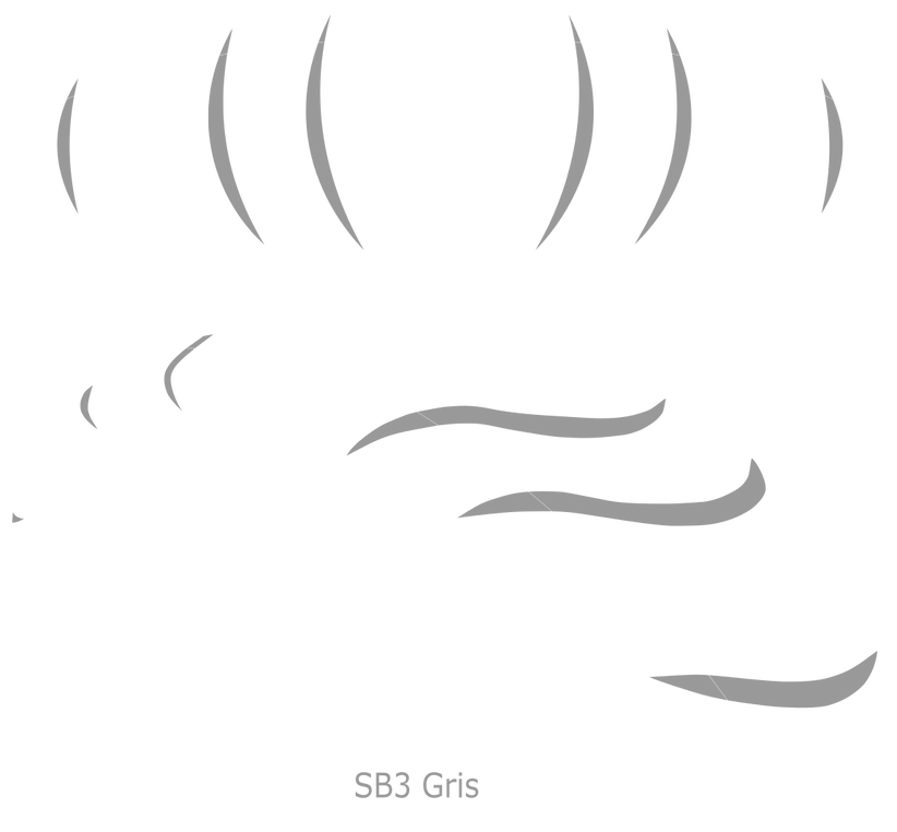 g3955.png