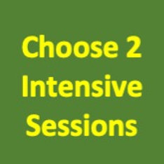 Intensives - Choice of 2 Sessions