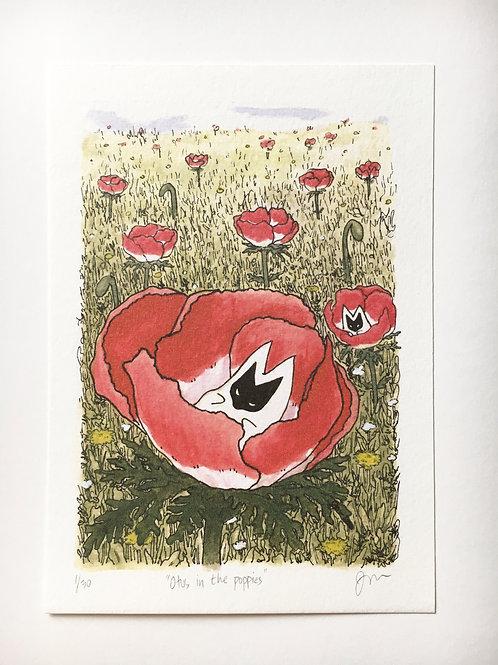 """Otus in the poppies,"" 2020, art print"