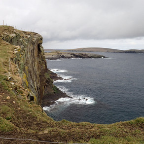 Shetland day out - coastal walk, great coffee, leucistic starling and an art exhibition