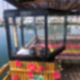 Tiki Helm 2020.jpg
