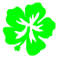 Green lei.png