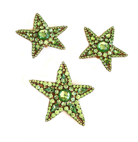 YSL Huge Star Brooch and Earrings